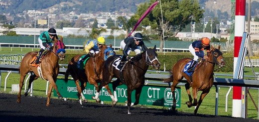 The Most Prestigious Events in Horse Racing