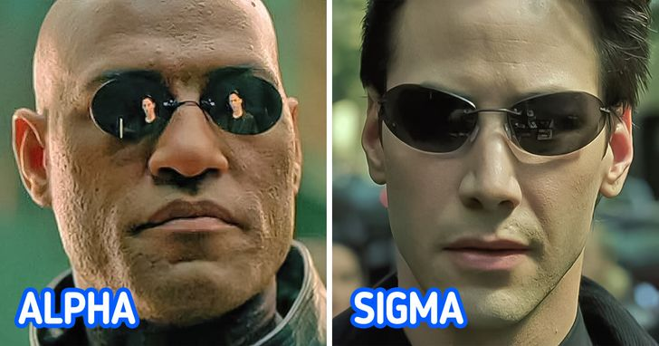 How to distinguish between sigma and alpha males