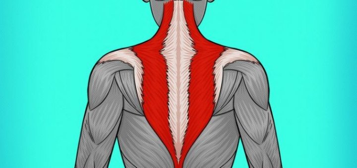 10 Ways to Rid Yourself of Annoying Pain in the Neck and Back
