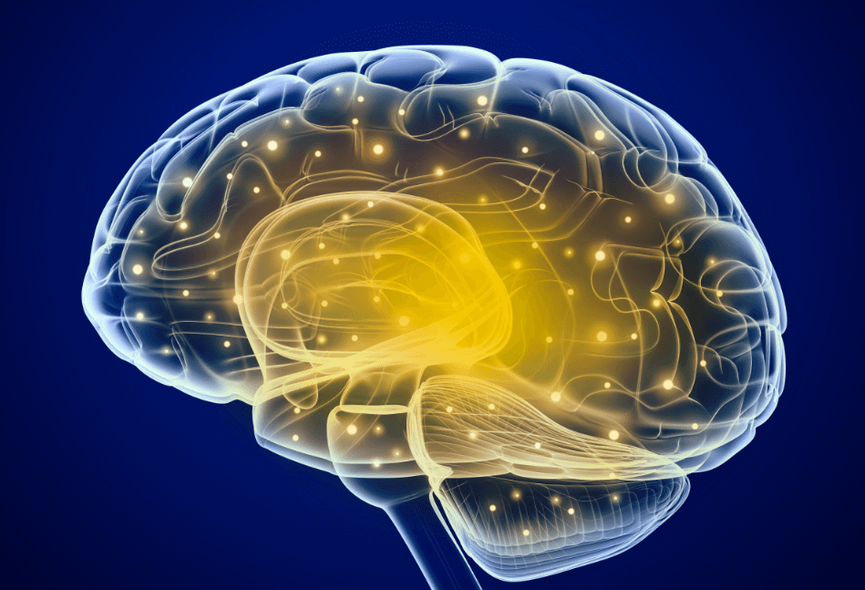 This Study Might Be The Answer of Treating Short-Term Memory Problems or Diseases Like Alzheimer's