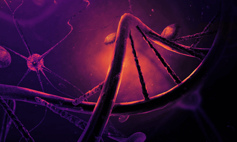Lower Your Cholesterol Permanently With New Gene Editing Injection