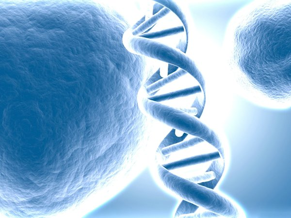 What Good Does 'Junk DNA' Do?