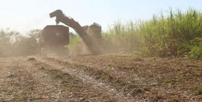 Weighing Up the Pros and Cons of Using Sugarcane Straw to Harvest Bioenergy