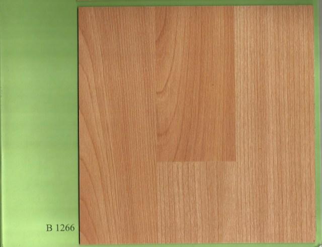 Borneo 1266