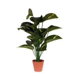 Konstväxt Växt i kruka Grön