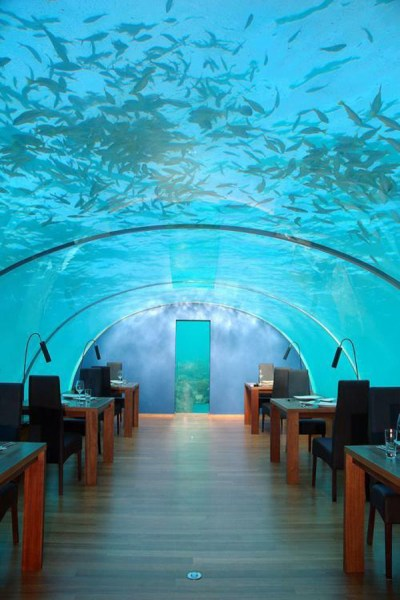 Ithaa The Maldives Undersea Restaurant