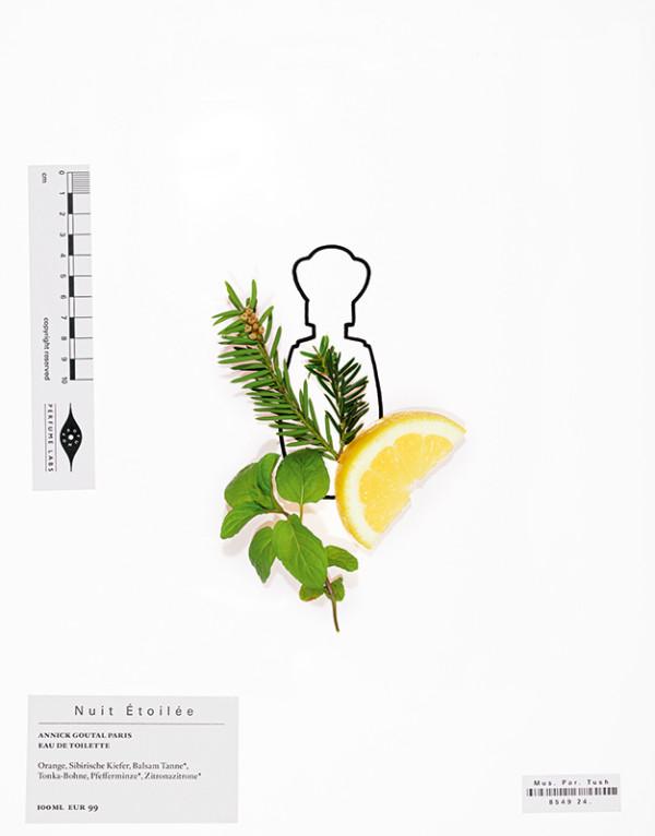 hedi-xandt-tush-magazine-02