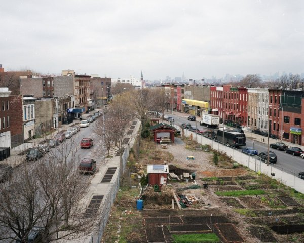 urban-farming-nyc-photo-by-Rob-Stephenson-8
