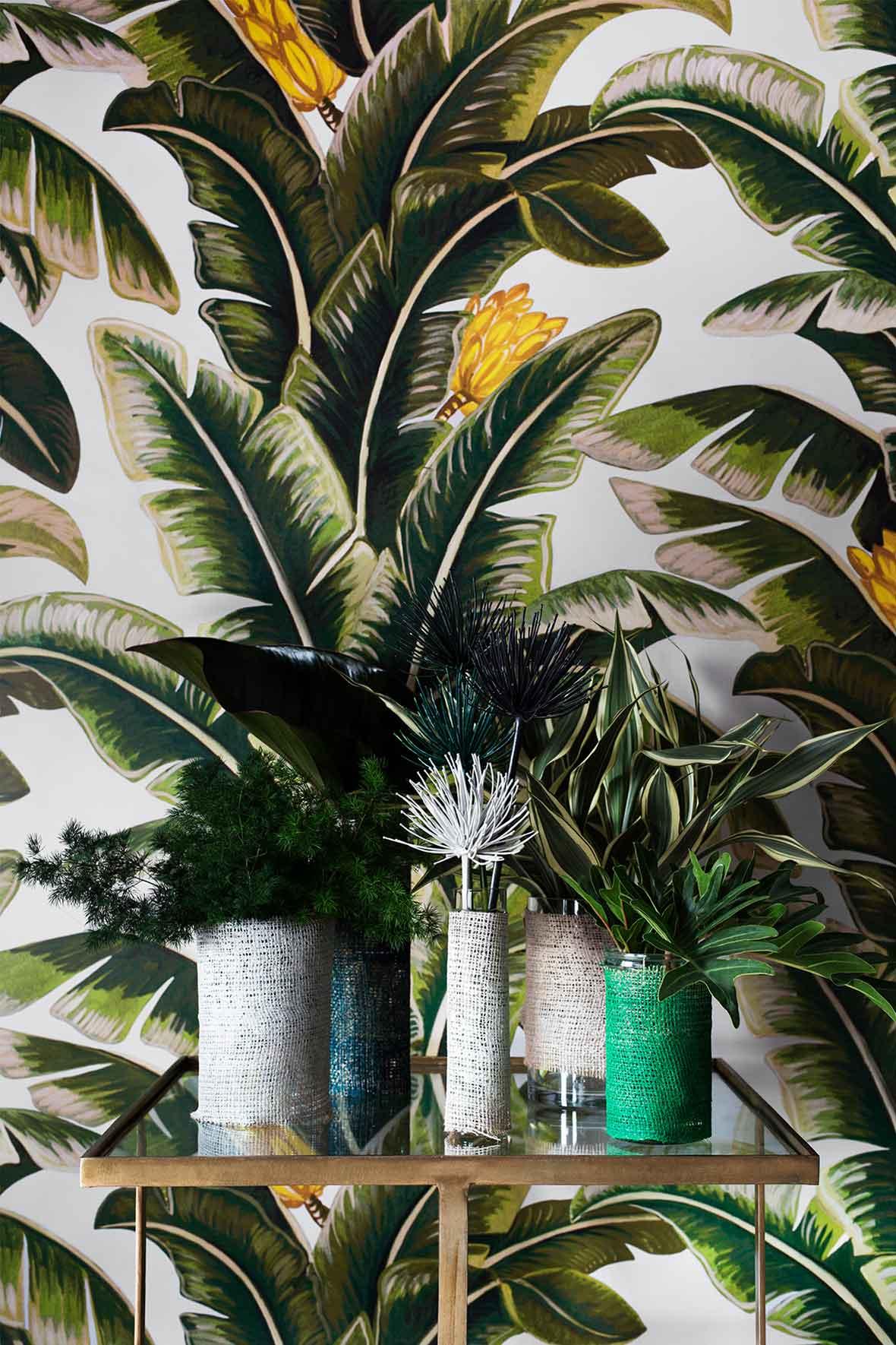 Rhythmic Palms: Haymes 2015 Color Forecast