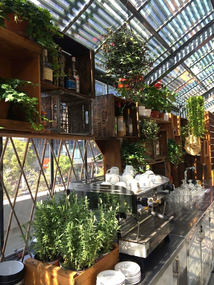 roy-choi-greenhouse-ace-hotel-Downtown-la-2