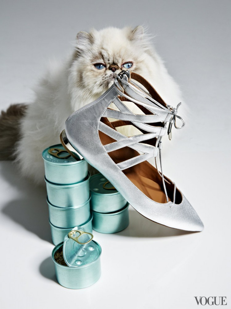 Vogue-animal-editorial-2