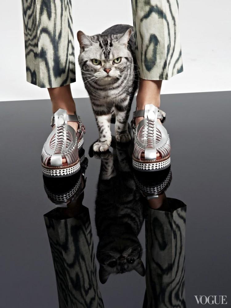 Vogue-animal-editorial-4
