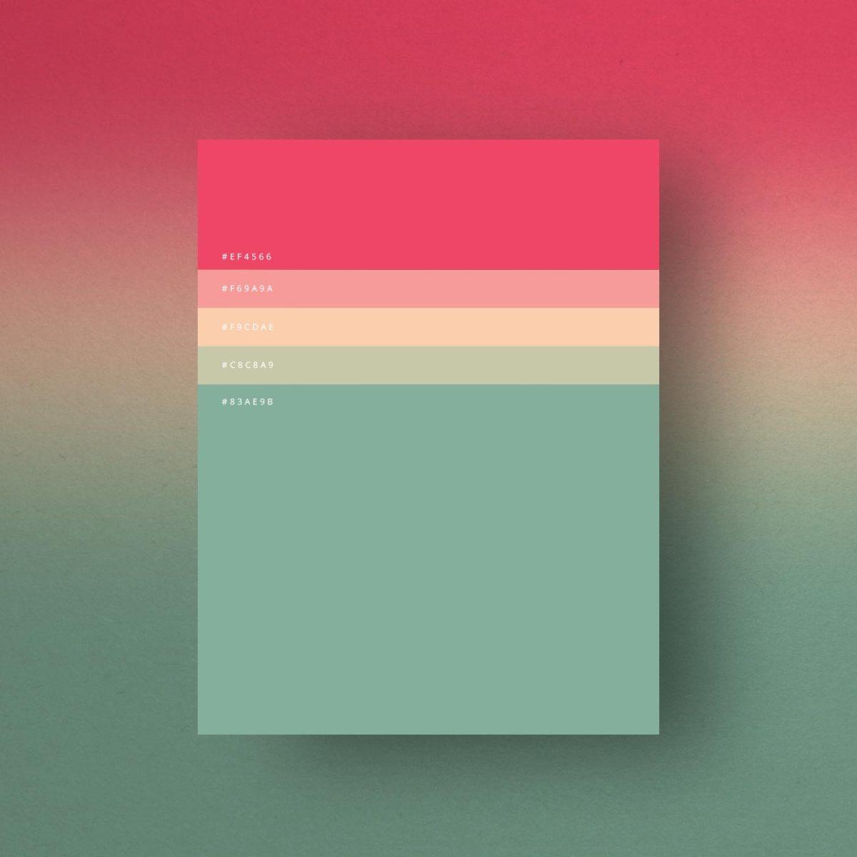minimalist-color-palettes-of-2015-3