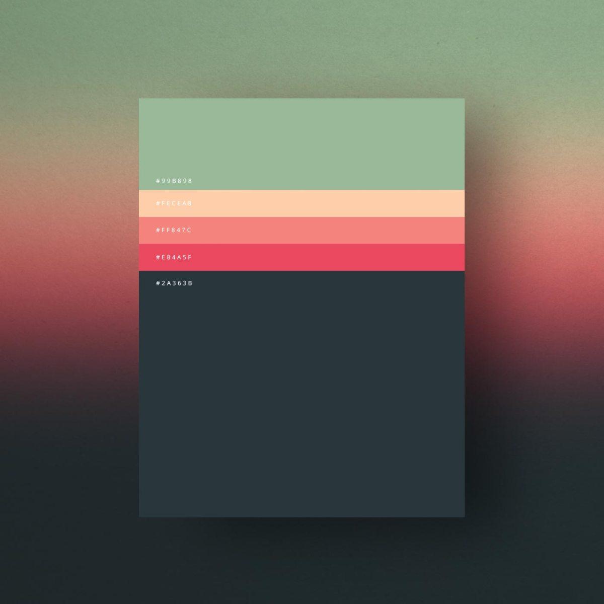 minimalist-color-palettes-of-2015-4