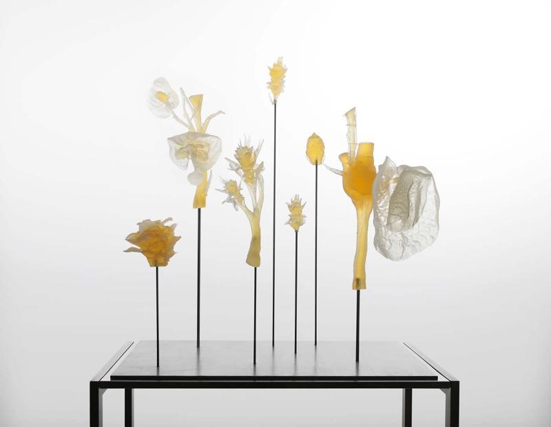 Marcin-Rusak-Flower-Entomology-Detail-03