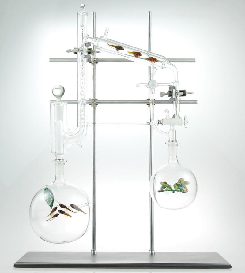 kiva-ford-glass-vessel-aquariums-04