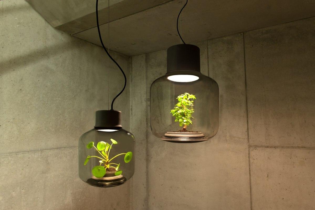 plants-in-windowless-spaces-we-love-eams
