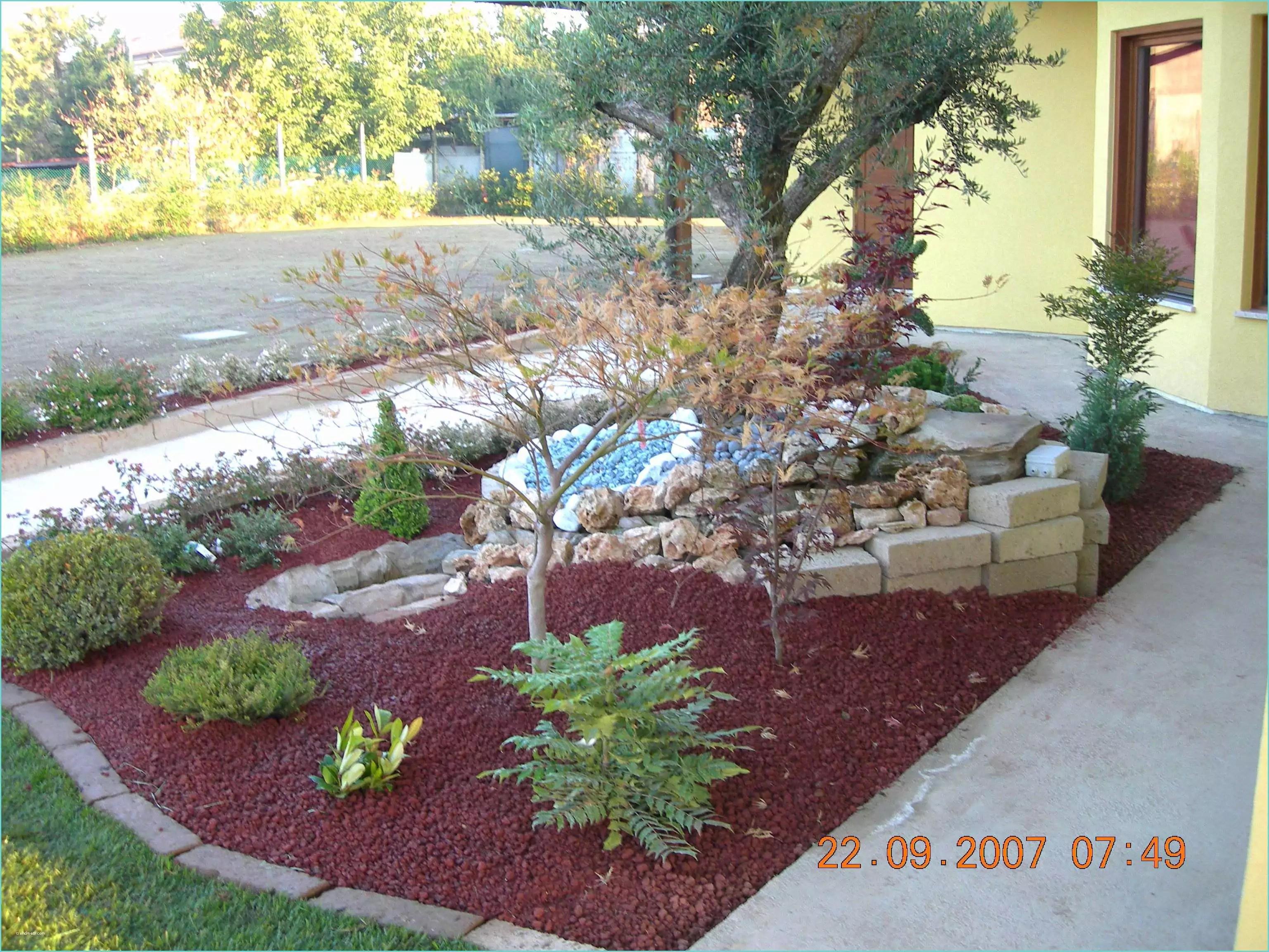 Idee Aiuole Giardino Con Sassi Idee Giardino Con Sassi 15 Fantastico Meravigliosa  Trendmetr