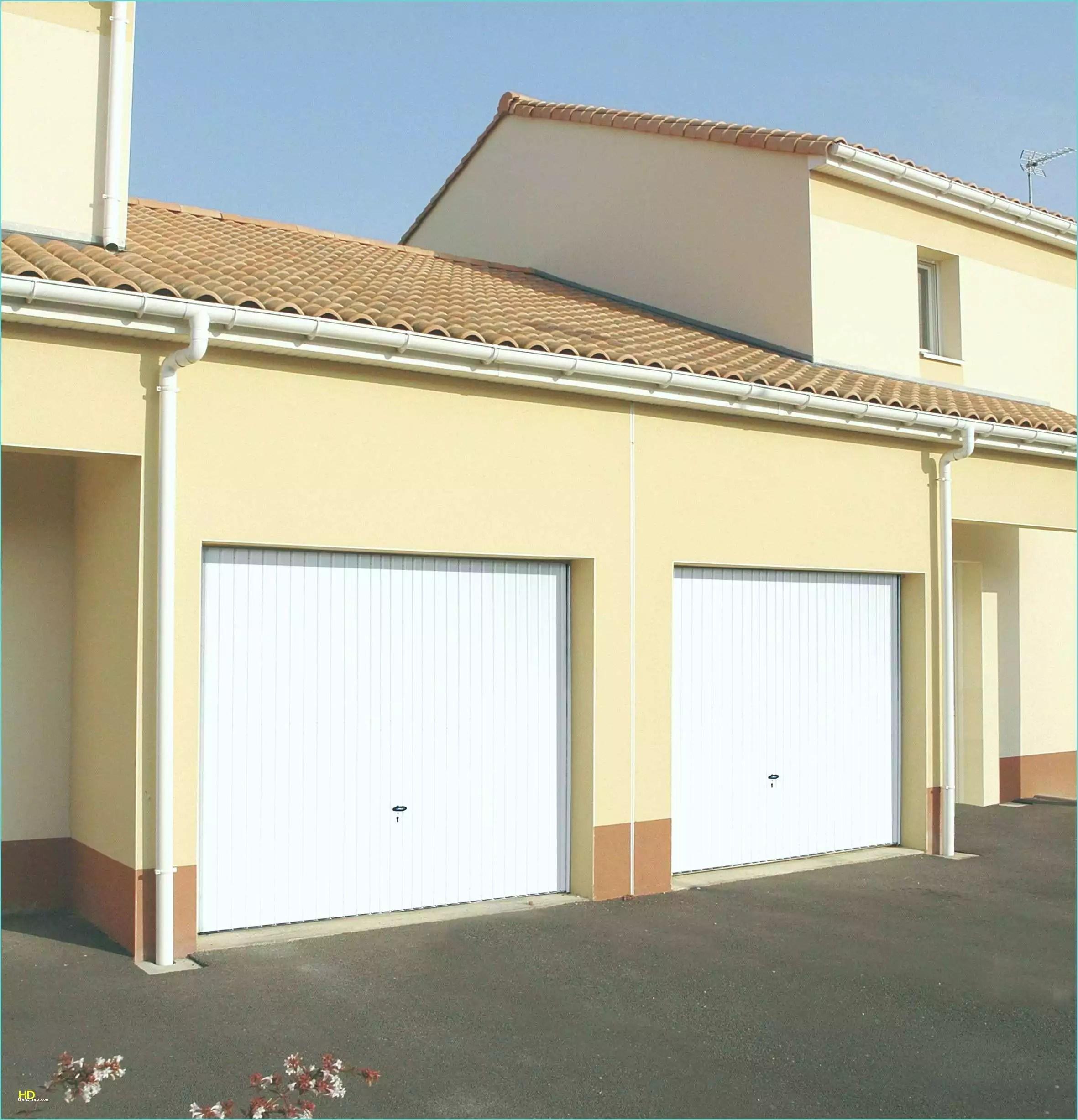 Porte De Garage Sectionnelle Brico Depot Avis Gamboahinestrosa
