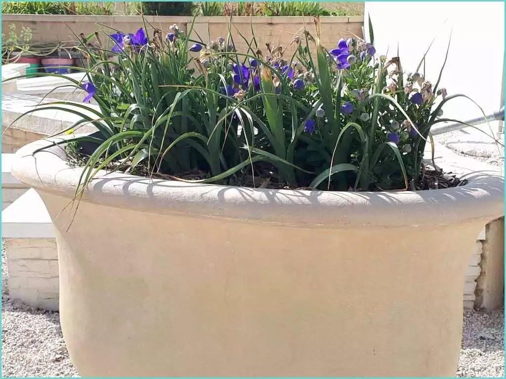 Vasque De Jardin En Plastique