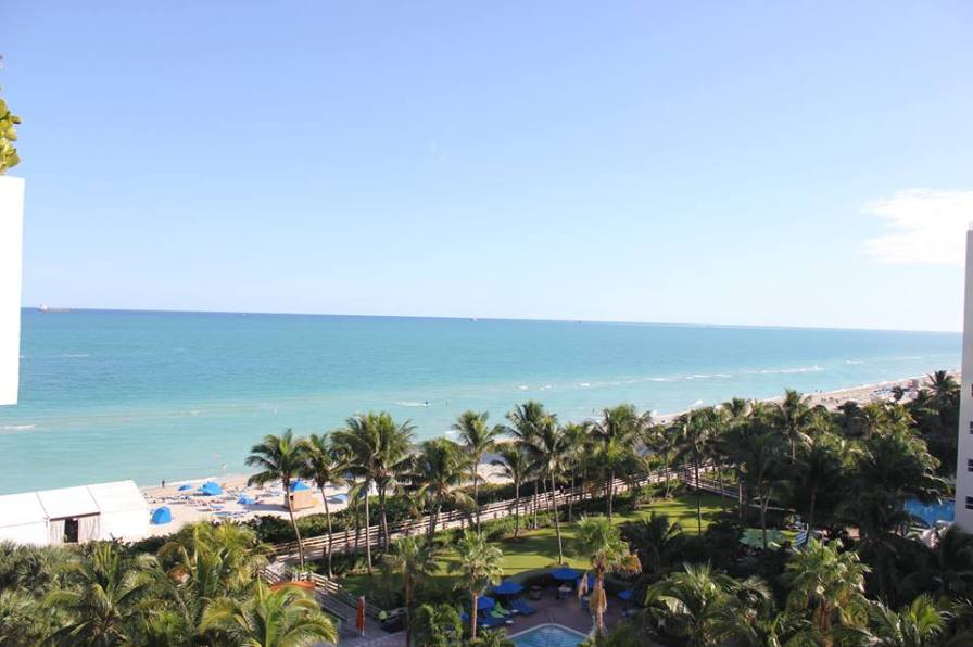 The view from the top of Soho Beach House, Miami Beach