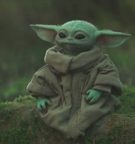 Baby Yoda (Grogu) Net Worth 2021 - 2020, Biography, Baby Yoda Name, The Mandalorian & Wik