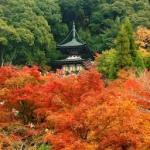 ぶらり1日で巡れる銀閣寺~南禅寺