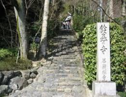 京都のおすすめ観光コース 願い事が叶う鈴虫寺