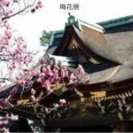 京都 北野天満宮の梅花祭と野点大茶湯