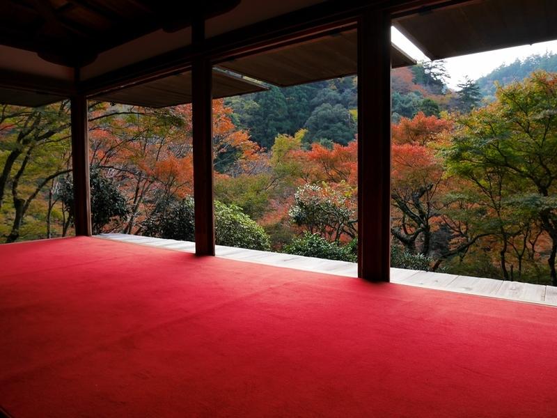京都 山間の紅葉と老舗旅館の穴場ランチ