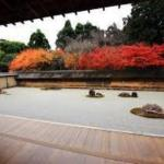 京都北区ではんなり紅葉狩り観光コース