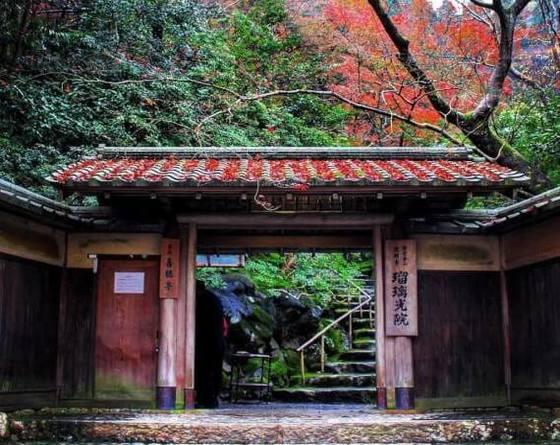 「幻の絶景」京都 瑠璃光院の紅葉