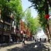 【ソウル】2日目 ディープな街でのランチはサムゲタンとポシンタン
