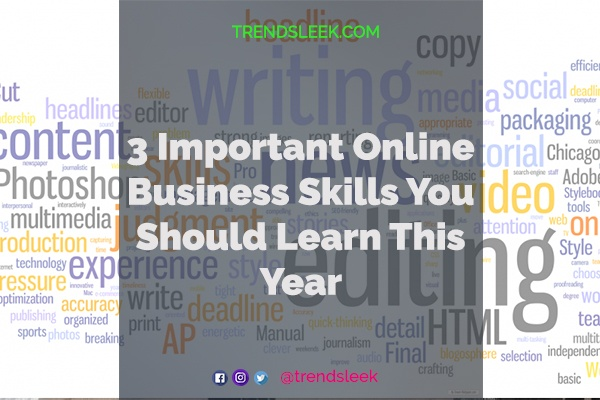 3 Important Online Business Skills You Should Learn This Year