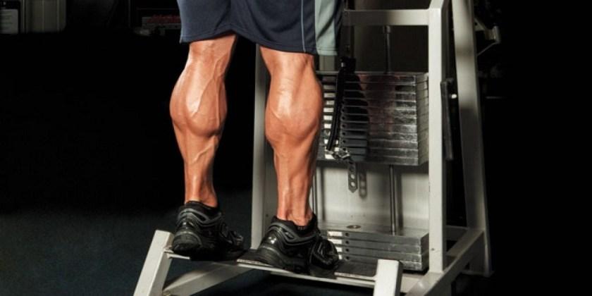 exercisesfor body fitness