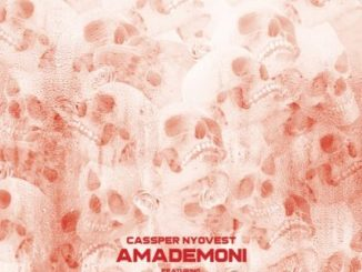 Cassper Nyovest Amademoni Lyrics