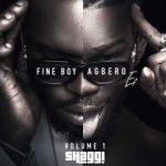 Broda Shaggi Ibadi Music Mp3 Download