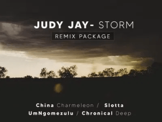 Judy Jay Storm Remix Package Music Free Mp3 Download