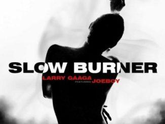 Larry Gaaga Slow Burner Mp3 Download