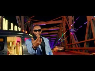 Flavour Chop Life Video Download