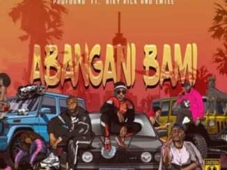 Profound Abangani Bami Mp3 Download