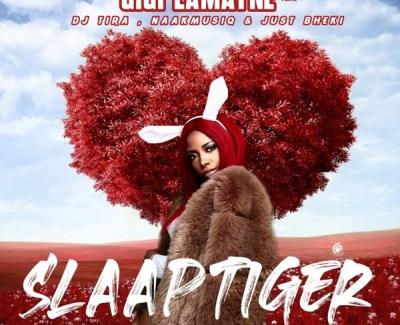 Gigi LaMayne Slaap Tiger Mp3 Download