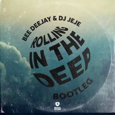 Bee Deejay Rolling In The Deep Download