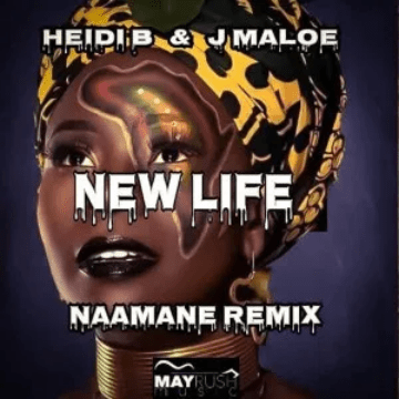 Heidi B New Life Mp3 Download