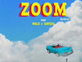 Cheque Zoom Remix Mp3 Download
