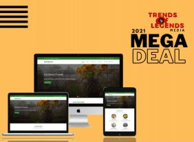 2021 Mega Deals by TrendsOfLegends Media