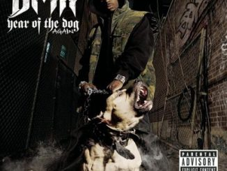 DMX Year of the Dog Again Album Download