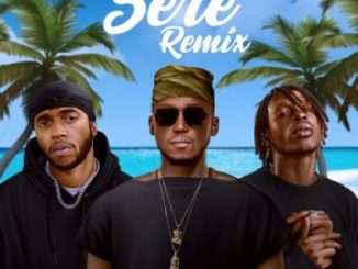 DJ Spinall Sere Remix Mp3 Download