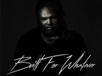 Tee Grizzley Built For Whatever Album Download