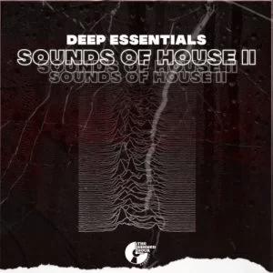Deep Essentials Sounds of House II EP Download